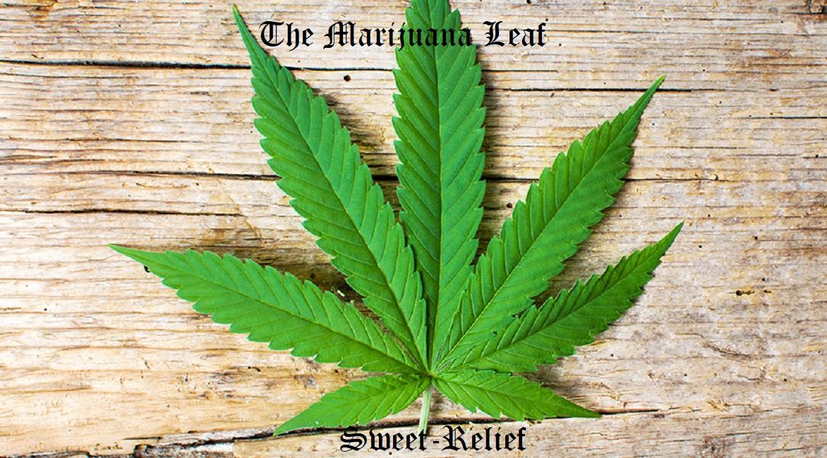 The Marijuana Leaf