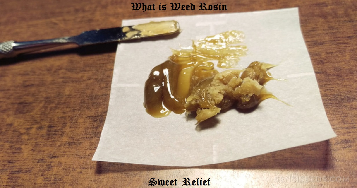 what is rosin