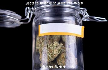 how to hide the smell of weed