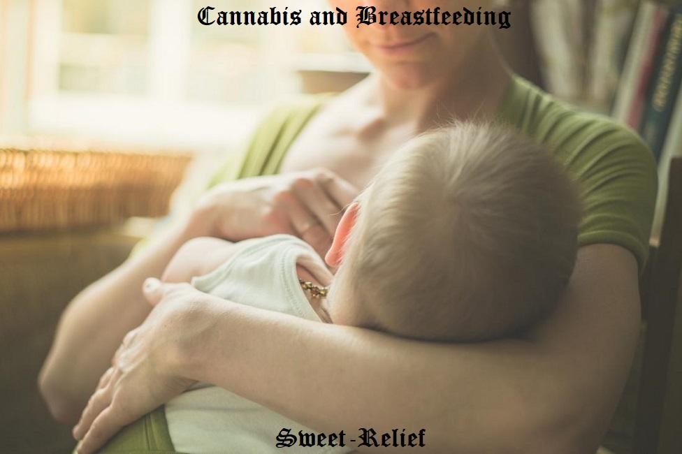 weed and breastfeeding